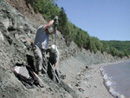Fossil digging in 2005