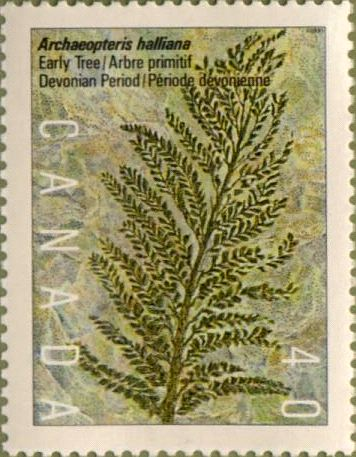 Stamp featuring Archaeopteris